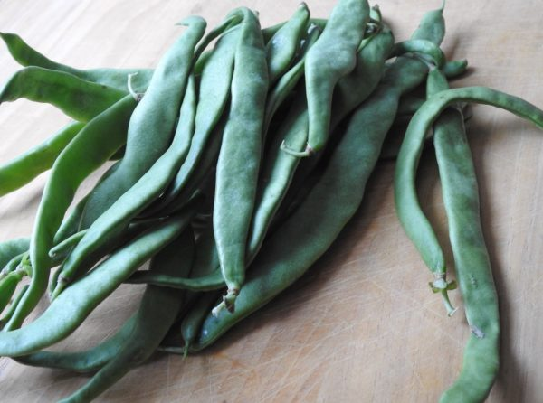 raw Romano beans, flat bean, Italian pole beans, or fagioli a corallo on a cutting board